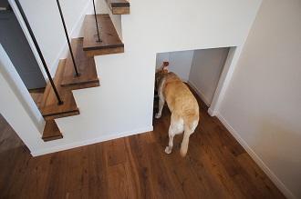 BASC GRAY、階段下収納、ペット、トイレ