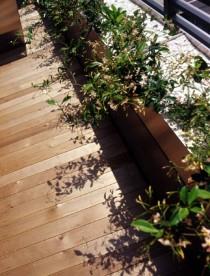 庭、ガーデニング、花壇、マンション、スタイル イズ スティルリビング