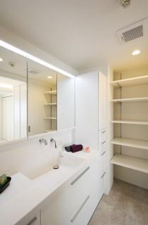 洗面台、収納、棚、サニタリー、アレックス