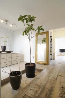 玄関、洋室、植栽、スポットライト、入り口、スタイル工房