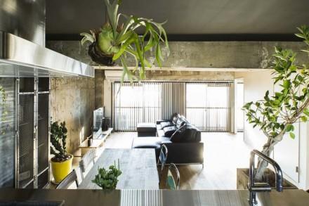 キステンレスキッチン、リビング、植物、梁、コンクリート、打ちっぱなし、秀建