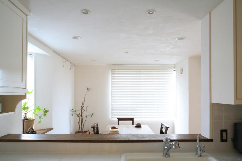 対面キッチン,ダイニング,観葉植物,リノベーション,FILE