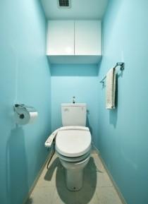 トイレ、アクセントカラー、DIY、既存の水廻り、水回り、リノベーション、ロハススタジオ
