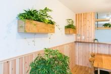 自然素材、リビング、ダイニング、造作棚、植物と暮らす、ナチュラル、マンションリノベーション、リノベーション