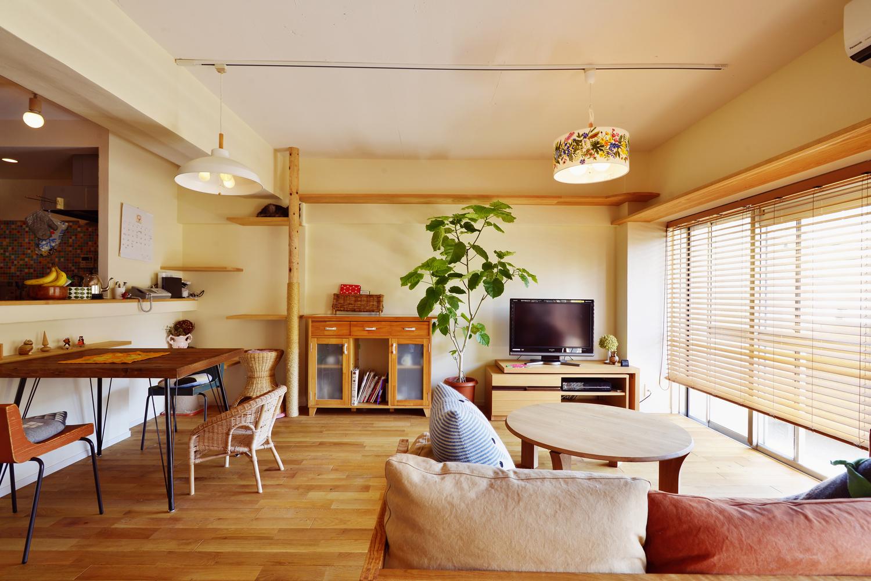 「スタイル工房」のリノベーション事例「猫たちものびのび快適!「好き」を詰め込んだカラフルな家」