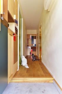 玄関、廊下、フローリング、猫、リノベーション、スタイル工房