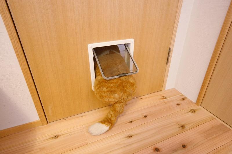 リノベーション、水工房、猫、猫ドア、猫扉、
