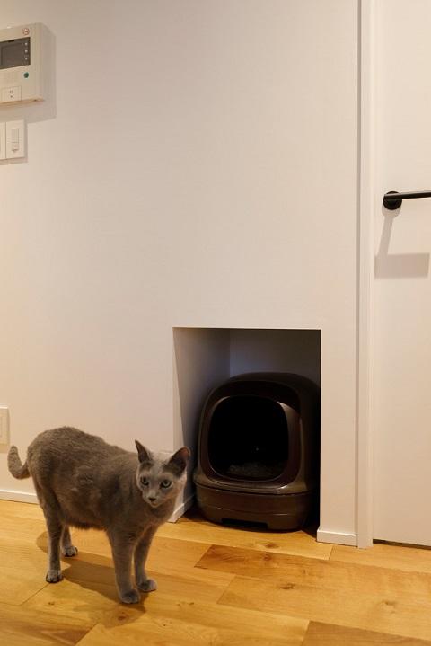 マンションリノベーション、三井のリフォーム、猫トイレ、廊下空間、建築家の家