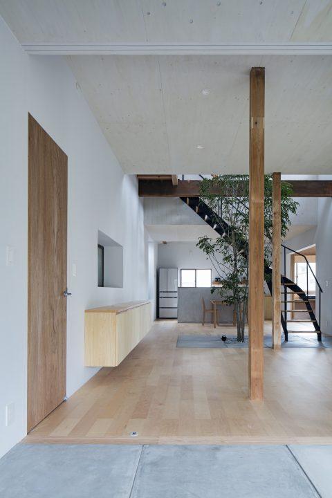 戸建てリノベーション、ツドウデザインスタジオ、段差のある天井、木とコンクリート、螺旋階段1