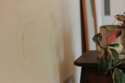 戸建てリノベーション、住工房株式会社、漆喰塗り、コテ塗り、白い塗り壁