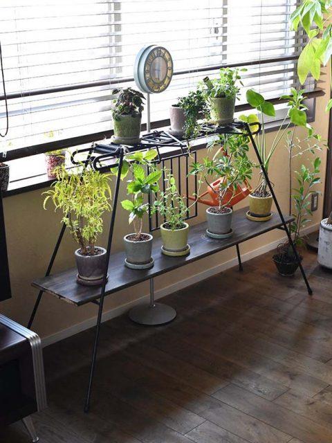 マンションリノベーション、錬、川崎市、リノベーション、アイアン棚、植物と暮らす、火ギア