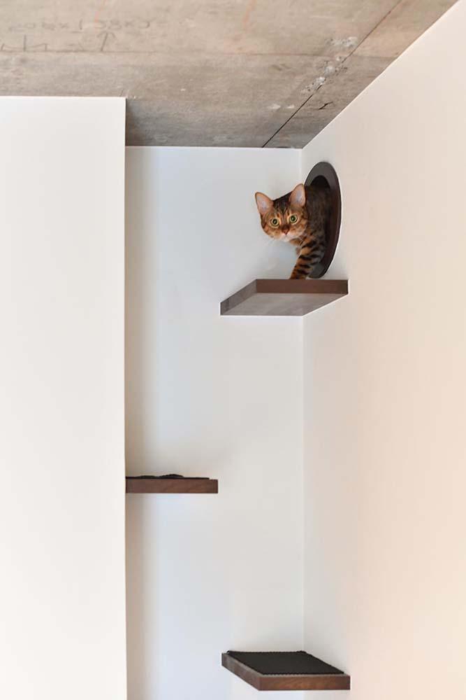 マンションリノベーション、錬、川崎市、リノベーション、ネコ、猫階段、キャットタワー