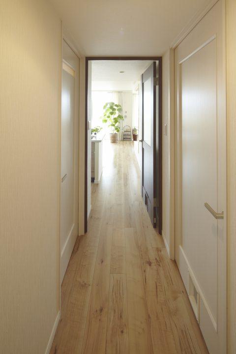 マンションリノベーション、野村不動産パートナーズ 、四方框、猫専用扉、白いドア
