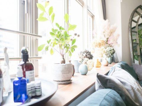 マンションリノベーション、CLOCK、出窓インテリア、グリーンと暮らす、窓際ソファ